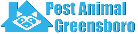 Greensboro Wildlife and Animal Removal